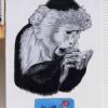 Arte urbano en la UHU: Wild Welva